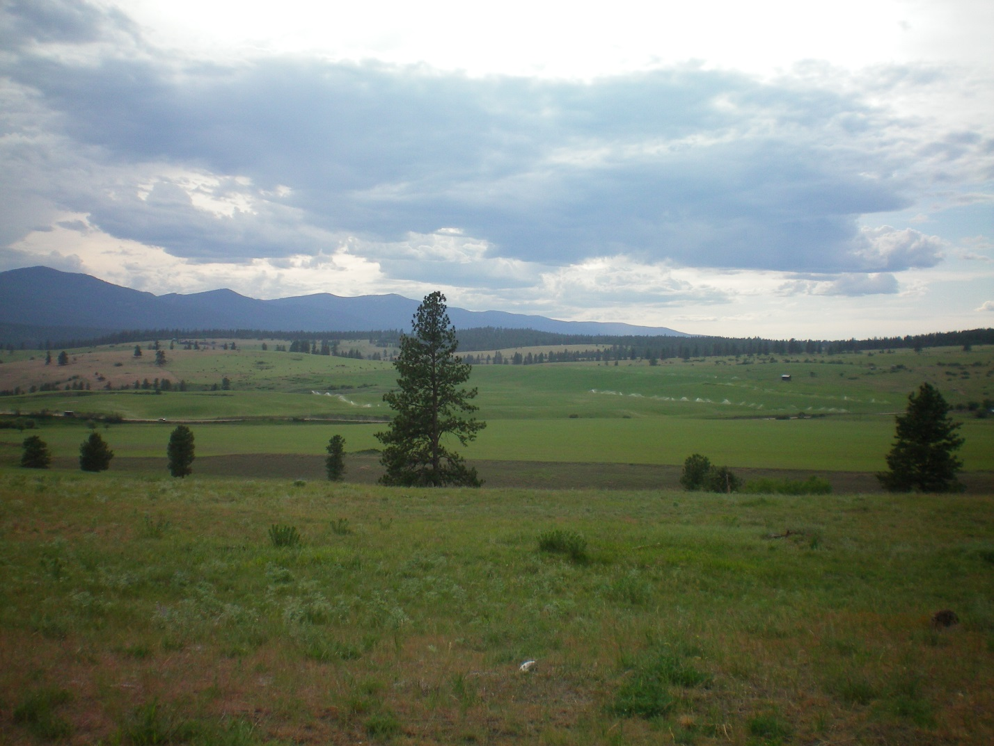 Boyer Ranch, a project with Five Valleys Land Trust to place 752 acres of the Boyer Ranch in Frenchtown under a conservation easement which included the original family homestead from the 1870s.