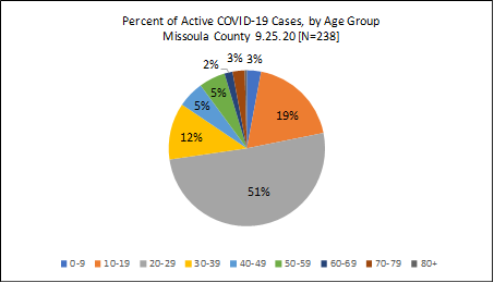 A pie chart showing the percent of active cases by age group
