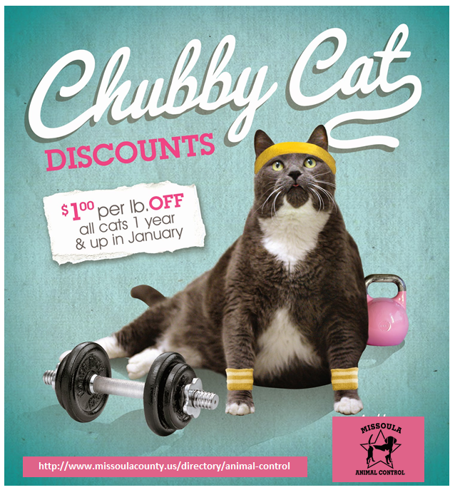 Chubby Cat Discounts - $1 off per pound